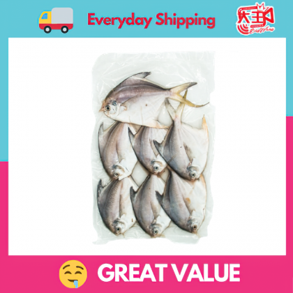 [Same Day Delivery] 7pcs small white pomfret